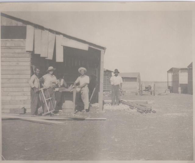 מחנה ישראלד