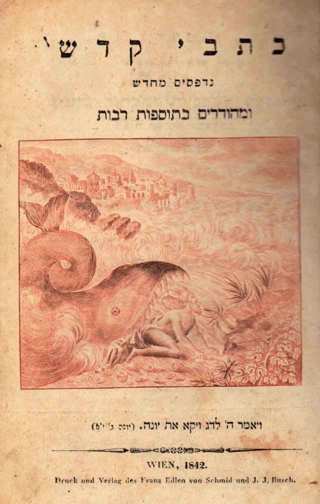"""השער המקורי. עותק ספריית הרמב""""ם (בית אריאלה)"""